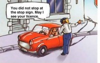 may-i-see-your-licence