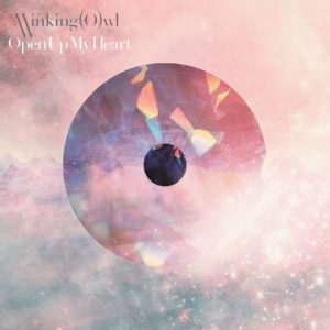 The Winking Owl  - Open Up My Heart 歌詞 PV