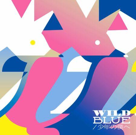 PENGUIN RESEARCH - WILD BLUE 歌詞 PV