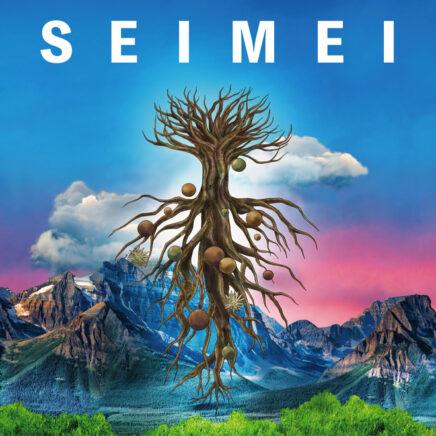 ゆず – SEIMEI
