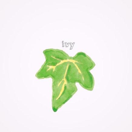 山崎あおい – ivy