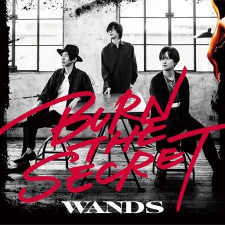 WANDS - 賞味期限切れ I love you 歌詞 MV