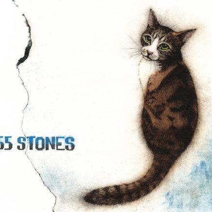 斉藤和義 アルバム 55 STONES